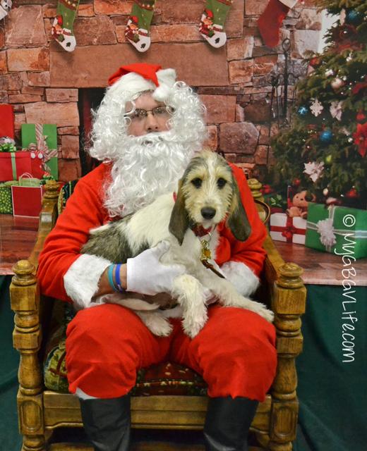 My GBGV Life Bailie and Santa