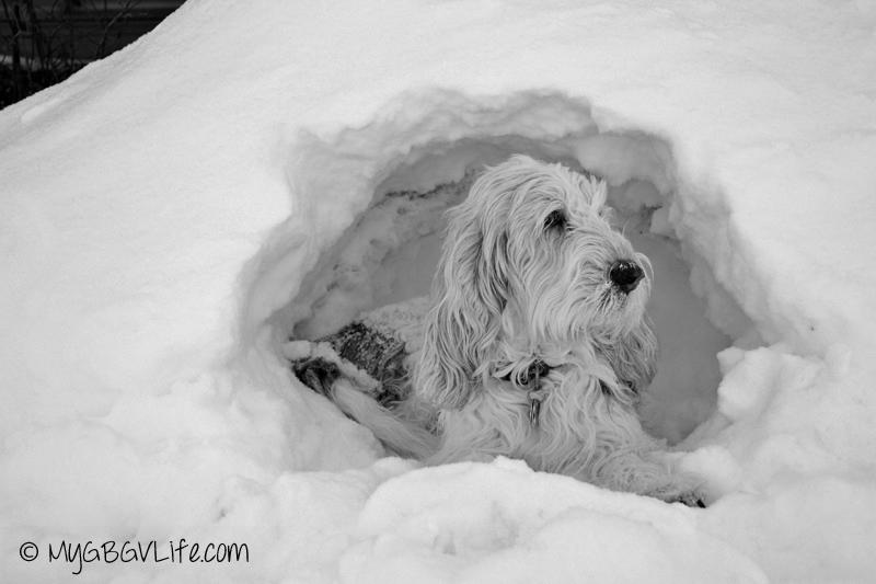 gbgv snow cave bw