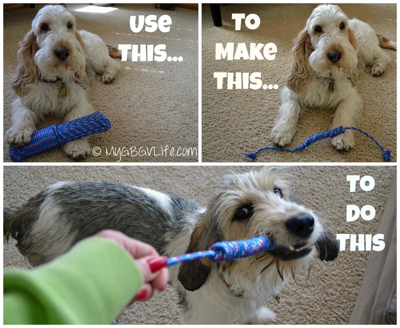 My GBGV Life DIY tug a war dog toy