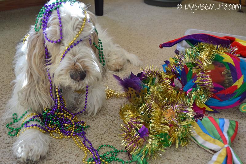 My GBGV Life Mardi Gras beads