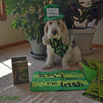 Make St. Patrick's Day Greener| GBGV | #ScoopThatPoop