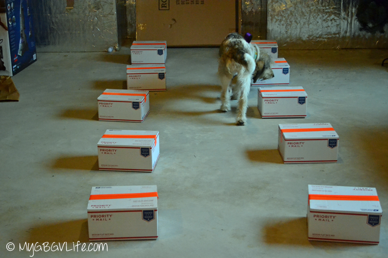 My GBGV Life Bailie studying the boxes looking for the source box