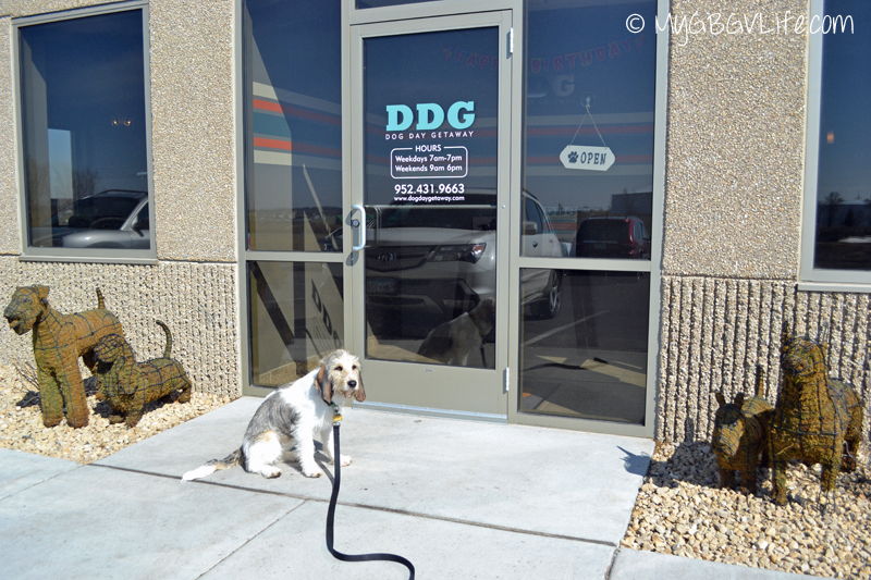 My GBGV Life at DDG in Apple Valley