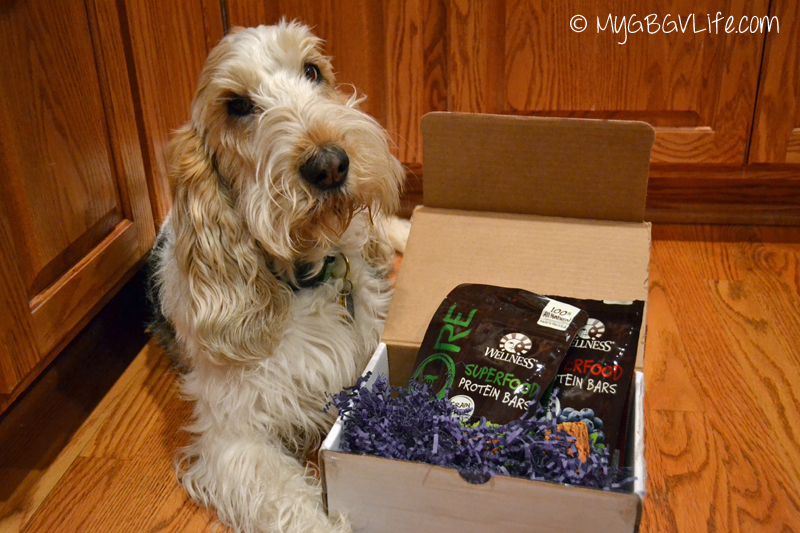 My GBGV Life with #WellPet CORE Superfood Protein bar