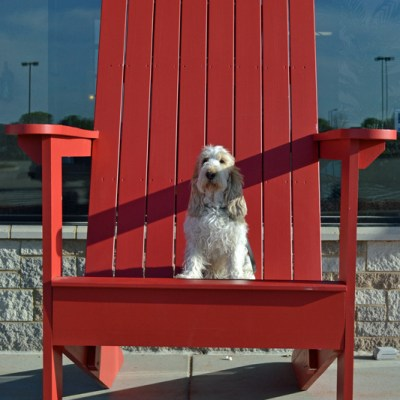 Nothing Beats A Good Adirondack Chair In The Summer!