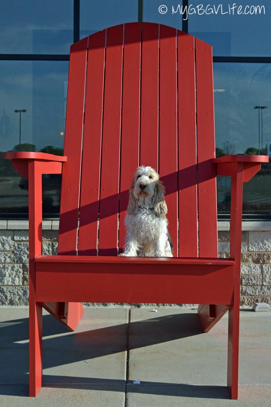 My GBGV Life in Adirondack chair