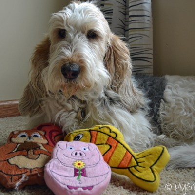 I found the ideal travel toys for dogs!   #PrideBites