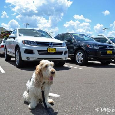 Emma Goes Car Shopping