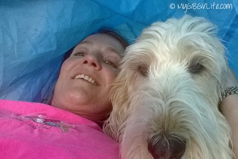My GBGV Life #DogFun Why life with dogs is best in the tunnel