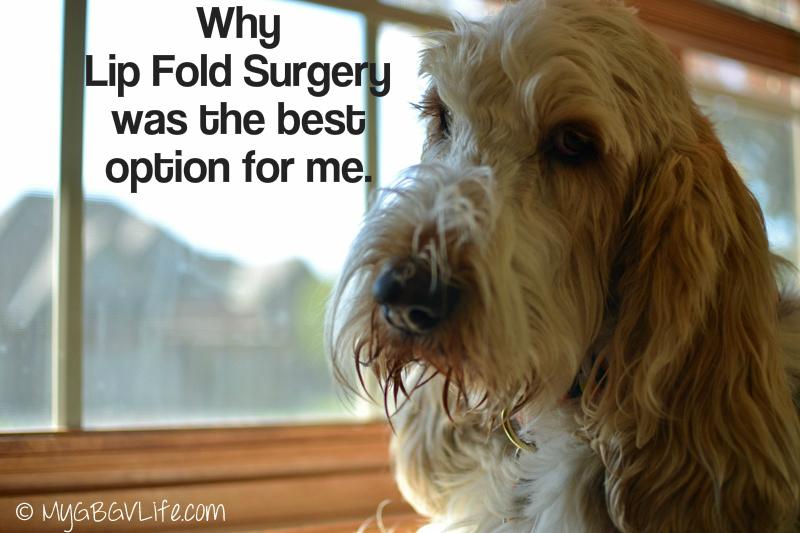 My GBGV Life why I had lip fold surgery