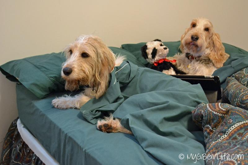My GBGV Life bedtime at the sleepover