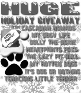 Huge Holiday Giveaway bw