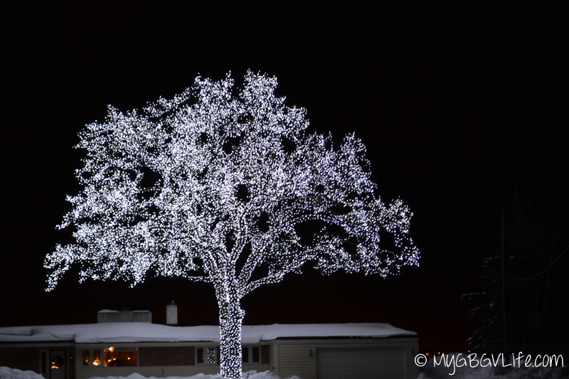 top 10 reasons to walk in th winter lights