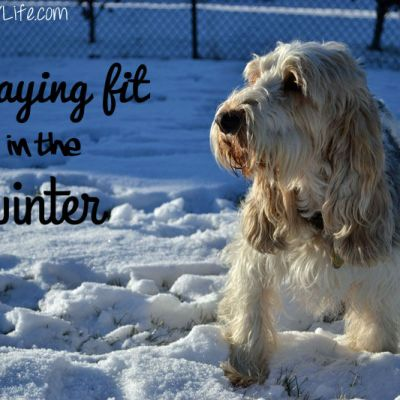 Staying Fit In The Winter