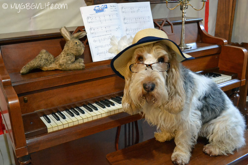 My GBGV Life ready to play piano music