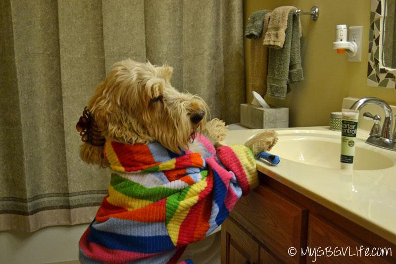 My GBGV Life Emma brushes her teeth