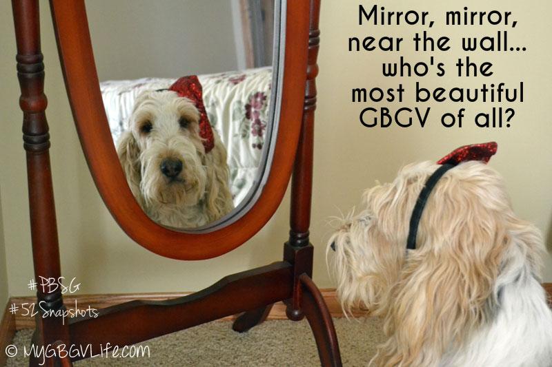 My GBGV Life mirror
