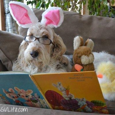 Emma's Easter Picks