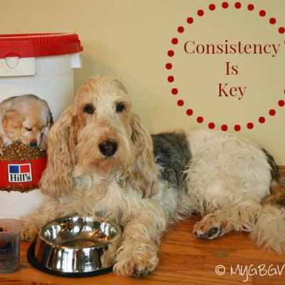 The Secret To #PerfectWeight Is Consistency