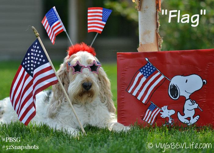 My GBGV LIfe happy flag day