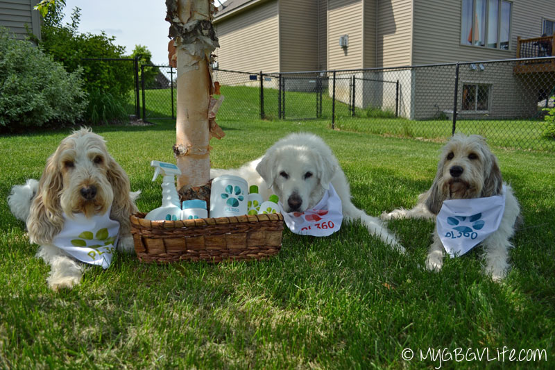 My GBGV Life dogs with pet friendly PL360 products