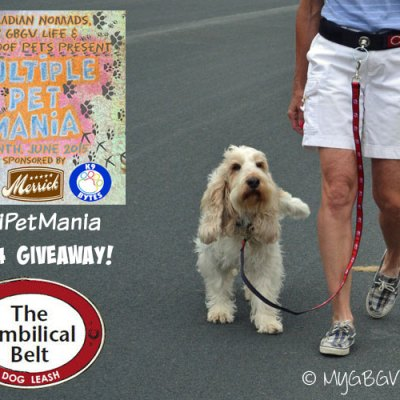 Go Hands Free With the Umbilical Belt #MultiPetMania {Giveaway}