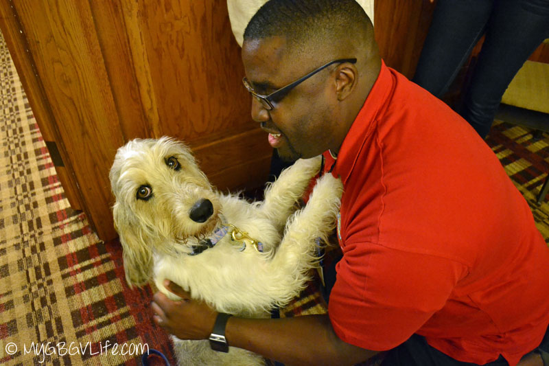 My GBGV Life PR Dog Bailie hugs with Andrick from PetSafe at BlogPaws 2015 in Nashville