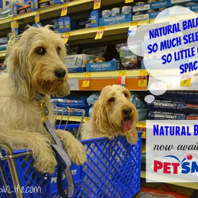 Shopping for Healthy Food And Treats! My #PetSmartStory