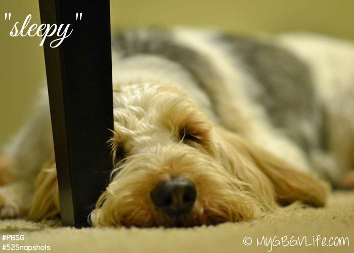 MyGBGV Life sleepy
