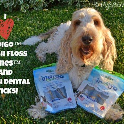 Long Lasting Dental Treats