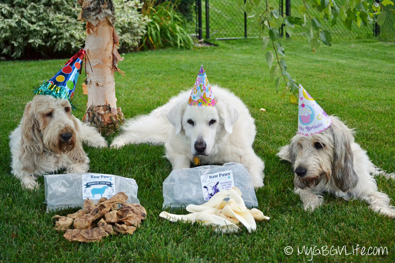 My GBGV Life family celebration for my 9th birthday