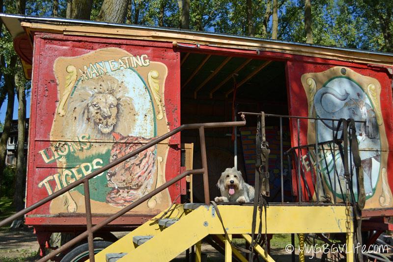 My GBGV Life Bailie at the circus car
