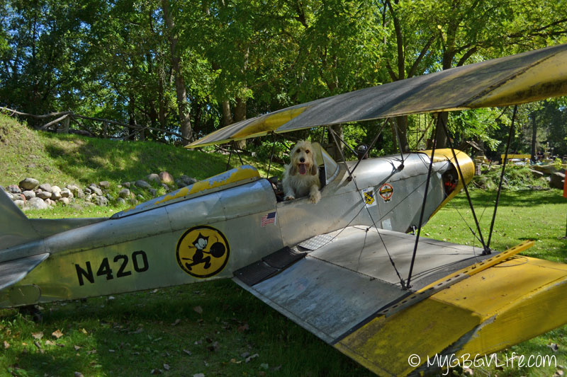 My GBGV Life Bailie wants to pilot a plane