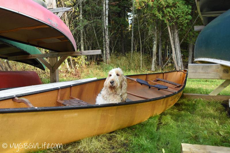 My GBGV Life Emma in the canoe