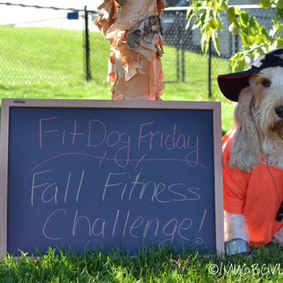 It's Win, Win With The FitDog Friday Fall Fitness Challenge and ABOUND! Over $900 in Prizes!