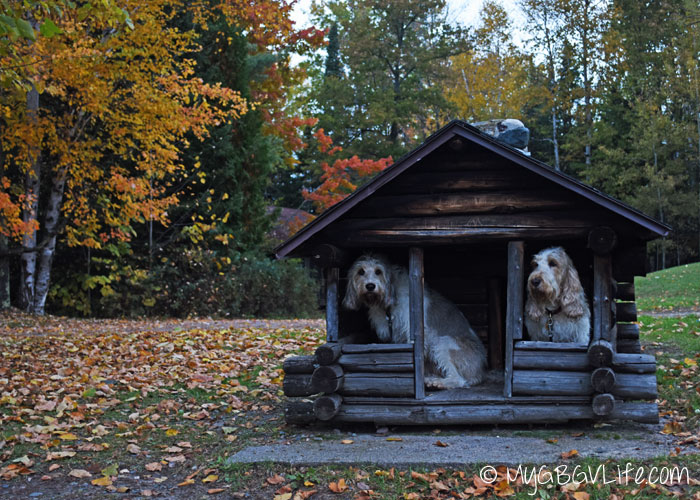 My GBGV Life Bailie and I on the front porch of our cabin