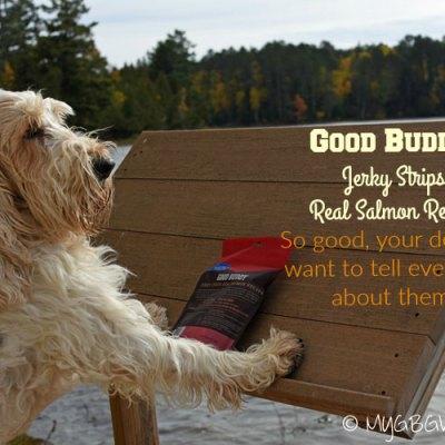 Take Good Buddy Along To Camp