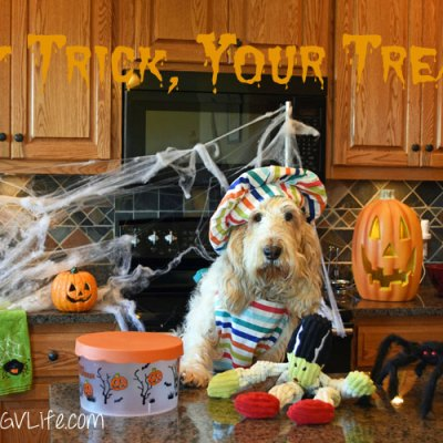 My Trick, Your Treat! #TrickorTreatDogs