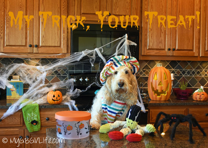 My GBGV Life My trick #trickortreatdogs giveaway hop