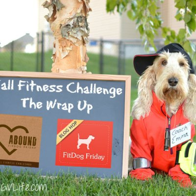 Fall Fitness Challenge Wrap Up #FallFitDog