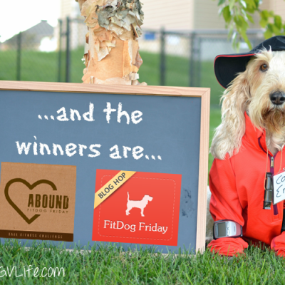 Fall Fitness Challenge – And The Winners Are…