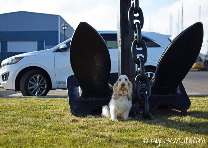 My GBGV LIfe Emma anchors the car