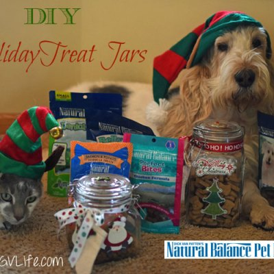 Easy DIY Holiday Treat Jars #NaturalBalance