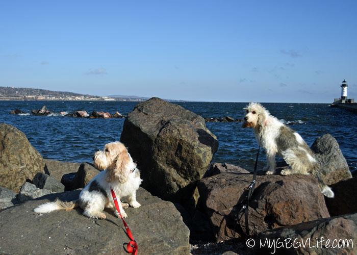 My GBGV Life Emma and Bailie rock climbing on the pier