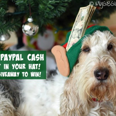 Huge Holiday Cash Giveaway – $250 PayPal Cash!