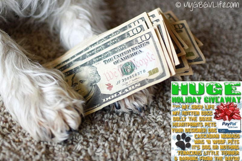 My GBGV Life Holiday cash in the paws