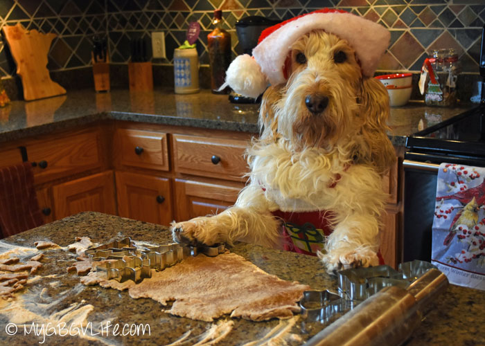 My GBGV Life Emma cuts out the gingerbread cookies for dogs
