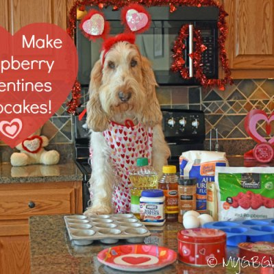 Raspberry Valentines Pupcakes For Dogs