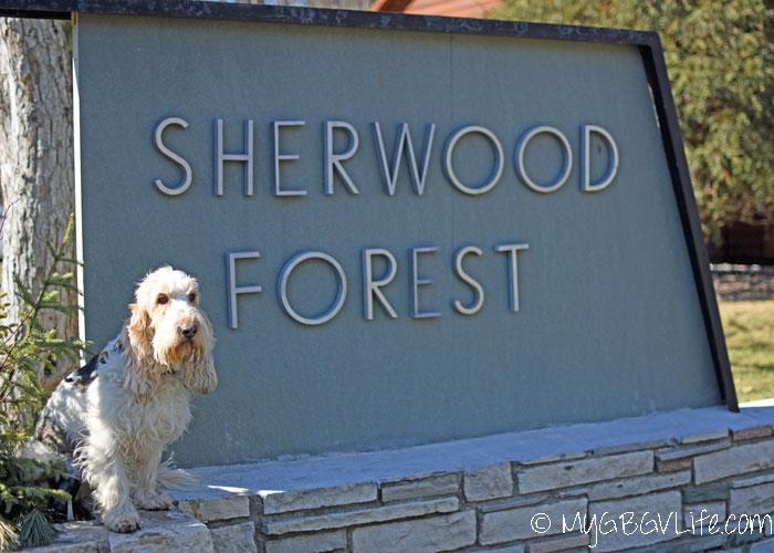 My GBGV Life A trip through Sherwood Forest