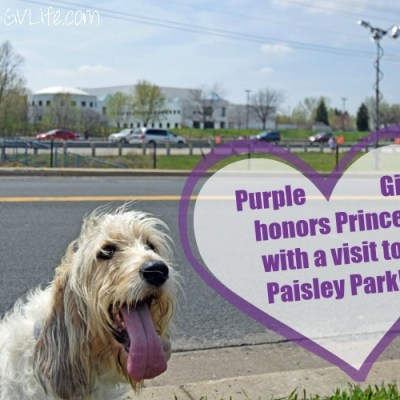 Paisley Park – Purple Girl Takes In The Prince Memorial